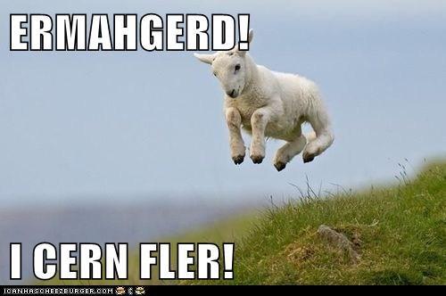 ERMAHGERD!  I CERN FLER!