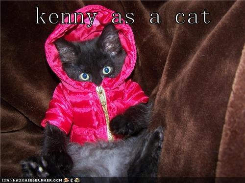 kenny as a cat