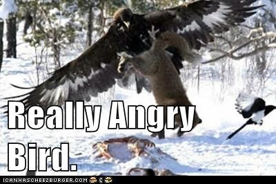 Really Angry Bird.