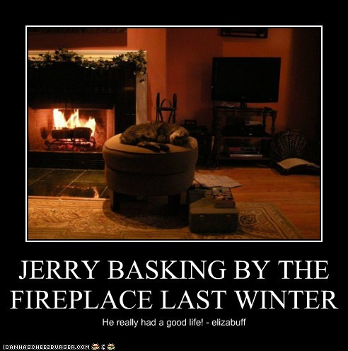 JERRY BASKING BY THE FIREPLACE LAST WINTER