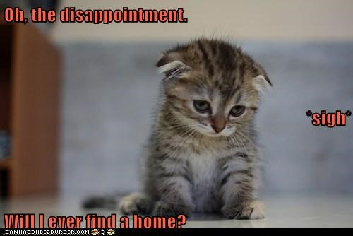 Oh, the disappointment. *sigh* Will I ever find a home?