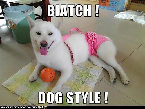 BIATCH !  DOG STYLE !