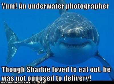Yum! An underwater photographer