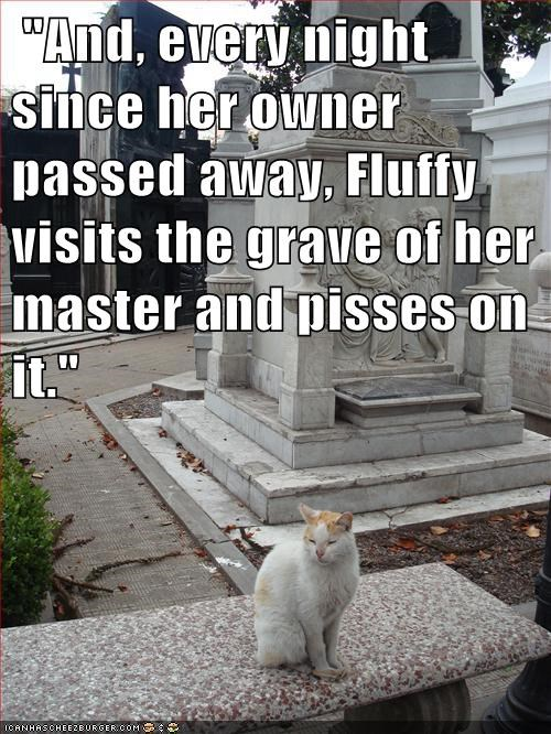 """And, every night since her owner passed away, Fluffy visits the grave of her master and pisses on it."""