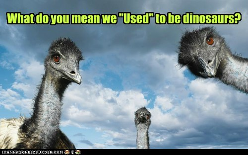 used to be,emus,what do you mean,still,dinosaurs