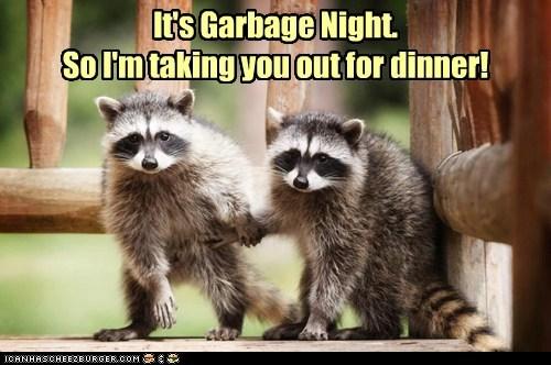 date,garbage,dinner,raccoons,holding hands