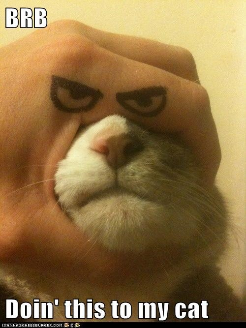 BRB  Doin' this to my cat
