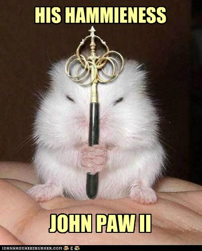 Pope John Paul II,pun,paw,tiny,pope,hamsters