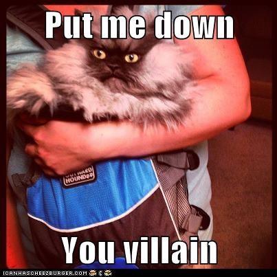 Put me down  You villain