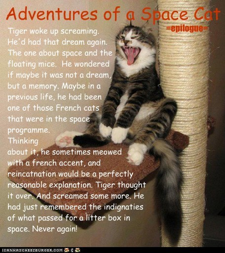 Adventures of a Space Cat =epilogue=