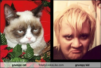 grumpy cat Totally Looks Like grumpy kid