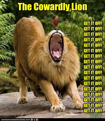 lions,scary,screaming,butterfly,get it off,Cowardly Lion