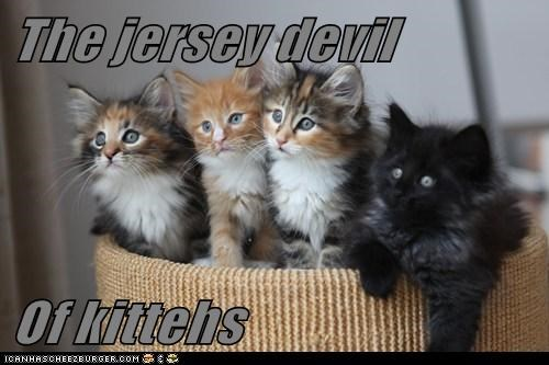 The jersey devil  Of kittehs