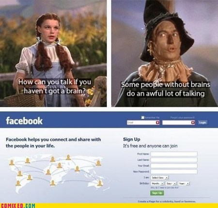 the wizard of oz,Movie,scarecrow,facebook,stupid people,brain