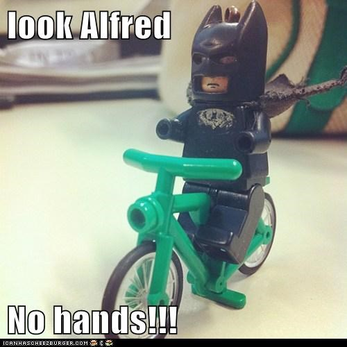 look Alfred  No hands!!!
