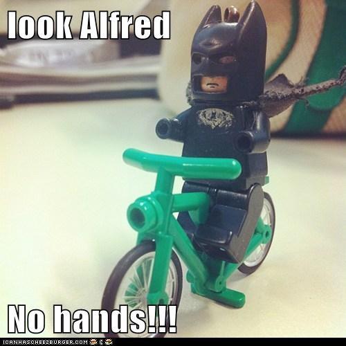 look Alfred  No hands!!!