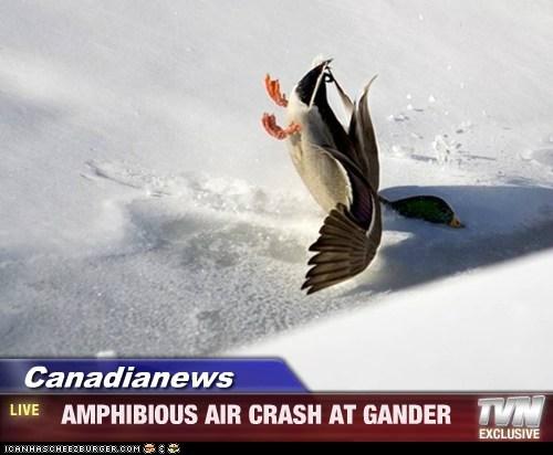 Canadianews -   AMPHIBIOUS AIR CRASH AT GANDER