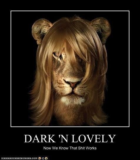 Dark'N Lovely