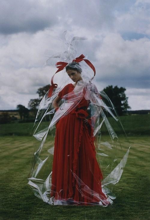 fashion,bow,wrapped,gift,style,cellophane
