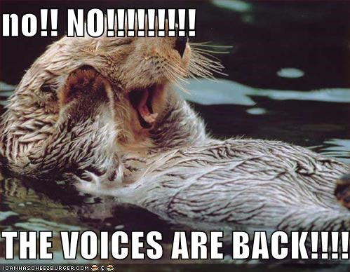 no!! NO!!!!!!!!!  THE VOICES ARE BACK!!!!!