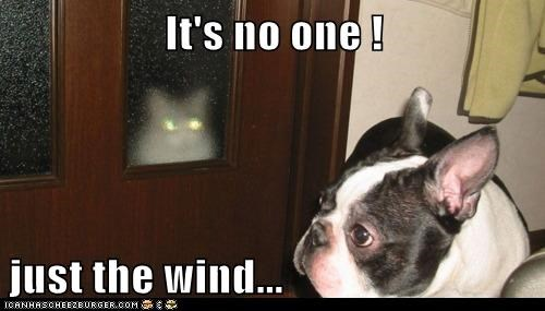 It's no one !  just the wind...