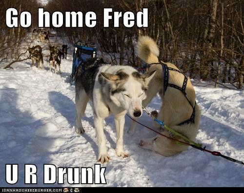 Go home Fred  U R Drunk