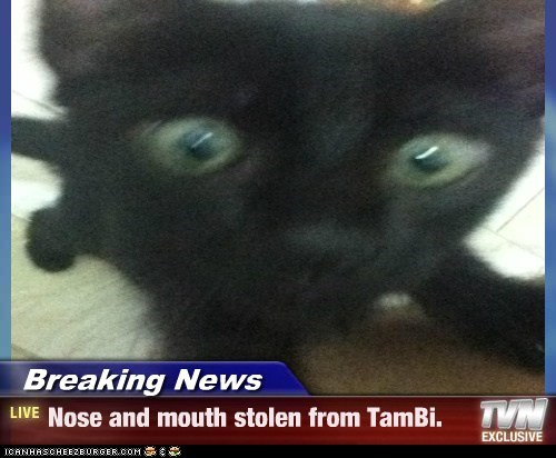 Breaking News - Nose and mouth stolen from TamBi.