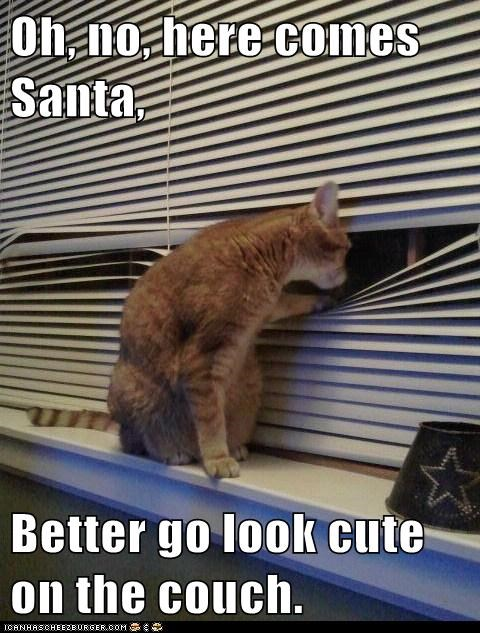 Oh, no, here comes Santa,  Better go look cute on the couch.
