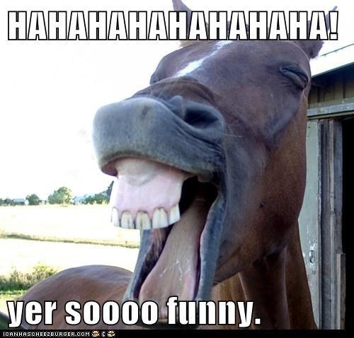 HAHAHAHAHAHAHAHA!  yer soooo funny.