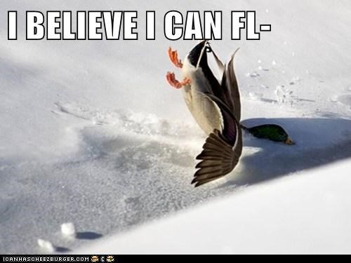 I BELIEVE I CAN FL-