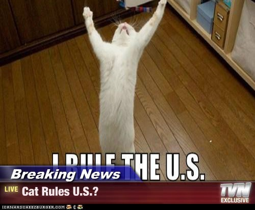 Breaking News - Cat Rules U.S.?