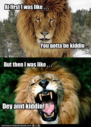 lions,not kidding,kidding,at first i was like,laughing