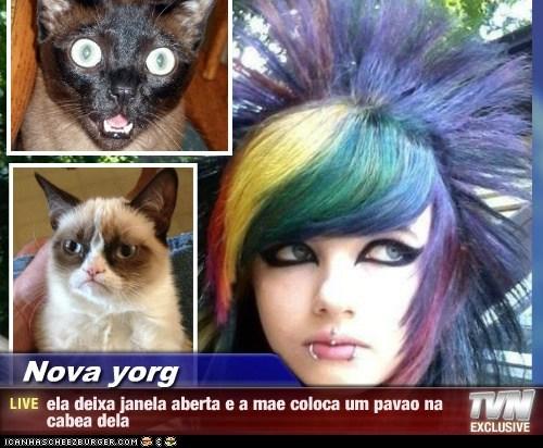 Nova yorg - ela deixa janela aberta e a mae coloca um pavao na cabea dela