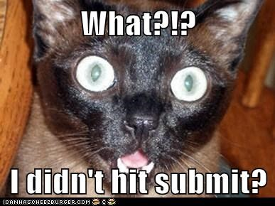 What?!?  I didn't hit submit?