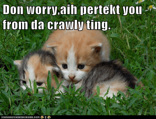 Don worry,aih pertekt you from da crawly ting.