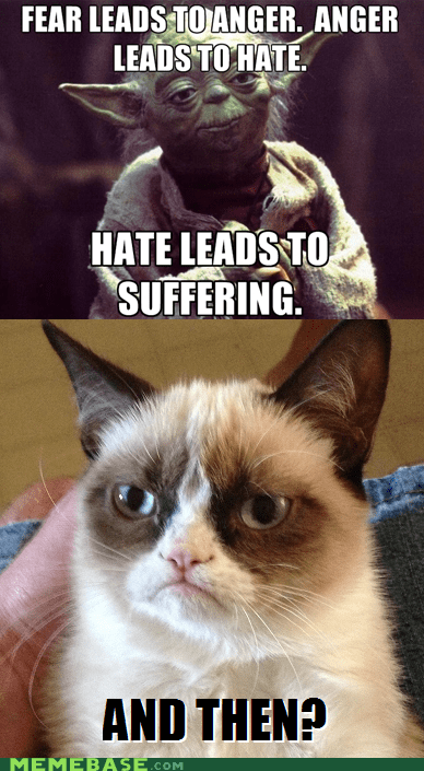 hate,star wars,Grumpy Cat,suffering,and then,yoda,tard