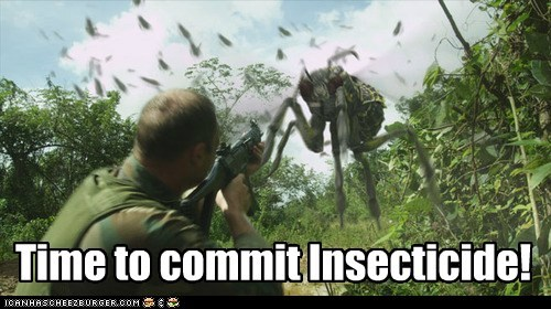 Time to Commit Insecticide!