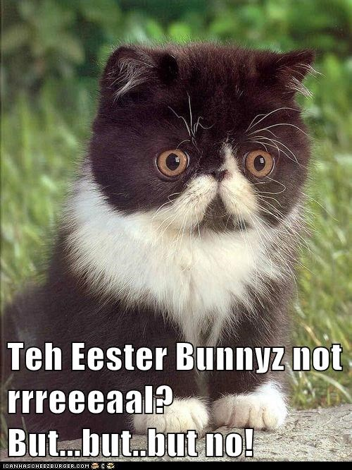 Teh Eester Bunnyz not rrreeeaal? But...but..but no!