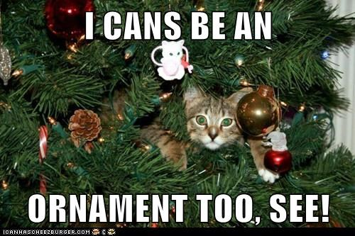I CANS BE AN   ORNAMENT TOO, SEE!
