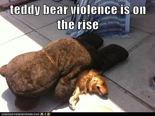 teddy bear violence is on the rise