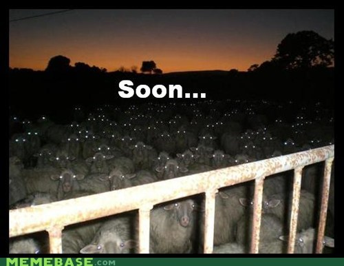 The Sheep are Prepared for the Alpacalypse