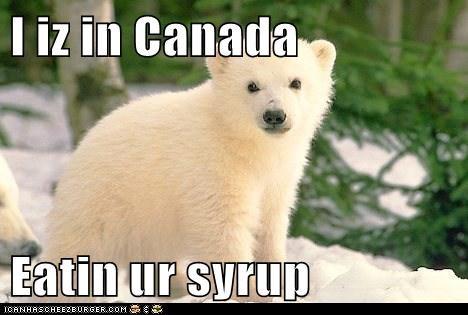 I iz in Canada  Eatin ur syrup