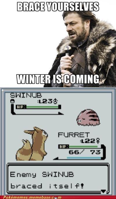 ability,snow cloak,brace yourselves,winter,swinub