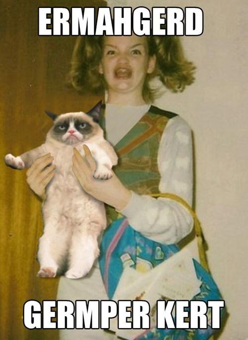 Ermahgerd,Grumpy Cat,derp