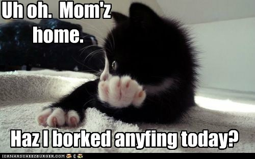 Uh oh.  Mom'z  home.