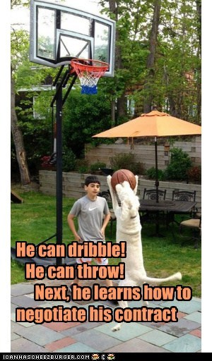 He can dribble!    He can throw!       Next, he learns how to         negotiate his contract