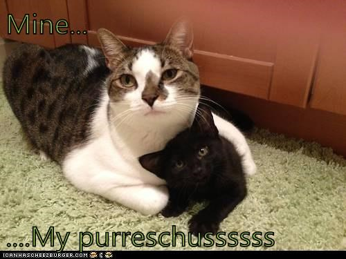 Mine...  ....My purreschussssss