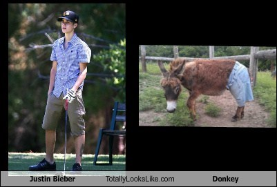 Justin Bieber Totally Looks Like Donkey