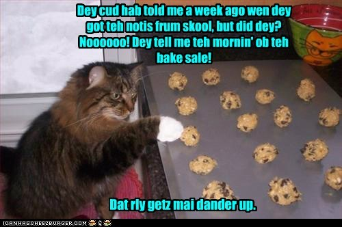 Mom We Need 4 Duzzen Cookiez Today!