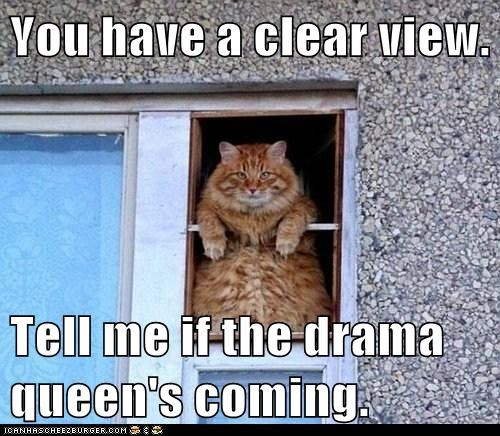 You have a clear view.   Tell me if the drama queen's coming.